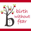 Sponsor: Birth Without Fear